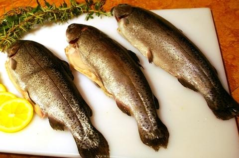 خوشمزه تر شدن ماهی